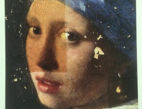 Vermeer Forschung